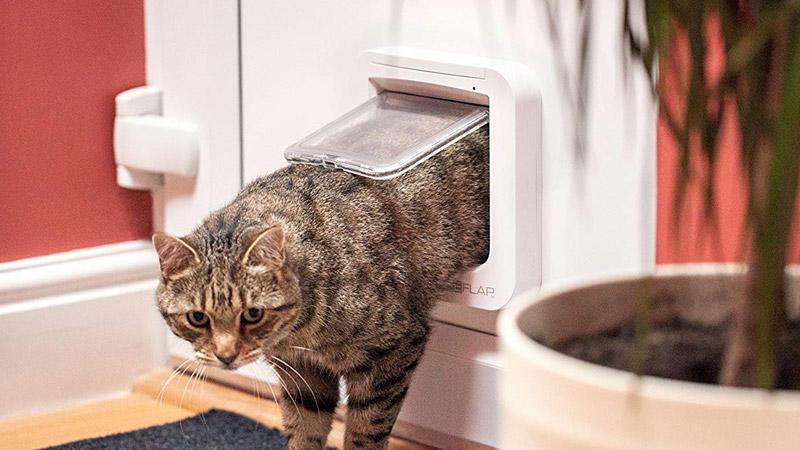 Les meilleures chatières électroniques