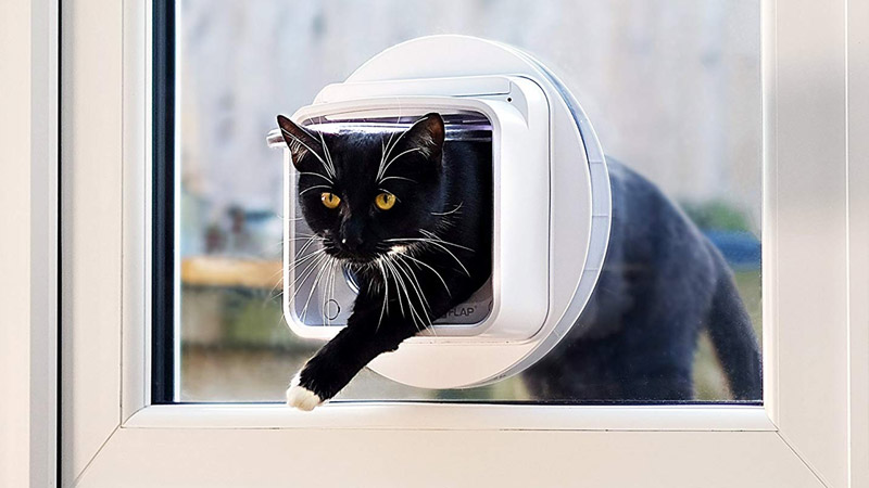 Top chatière électronique